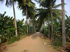 Eco Friendly driveway to Tapovan