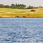 20140706_Fishing_Prylbychi_070.jpg