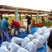 29 L'acquisto delle alevine al centro EMPA di Santo Domingo.jpg