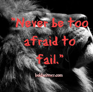 Don't be afraid of failure. Make it a friend