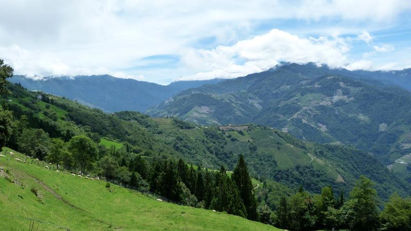 De Puli a Wuling 3275 metres d altitude J 9 - P1160490.JPG
