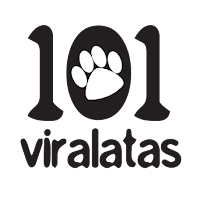 who is ONG 101 Viralatas 101 Viralatas contact information