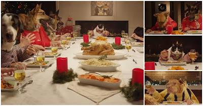 Câes e gato comem ceia de Natal à mesa com mãos humanas
