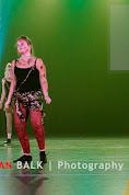 Han Balk Voorster Dansdag 2016-4323-2.jpg