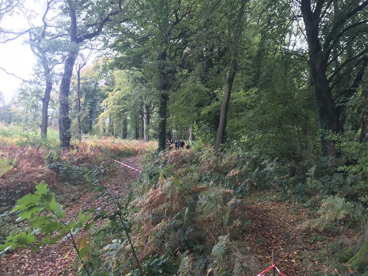 21/10/17 Lanaken Oefenveldloop - IMG_4977.JPG