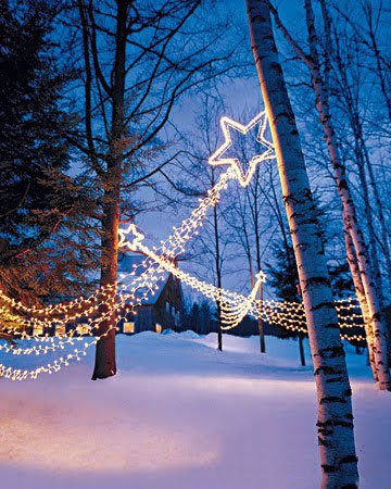 SHOOTING STAR OUTDOOR CHRISTMAS HOLIDAY LIGHT