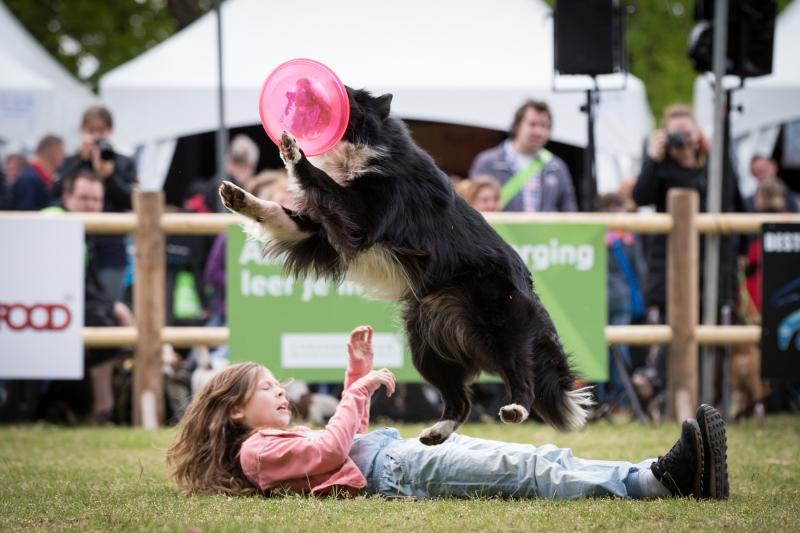 Animal Event 2016