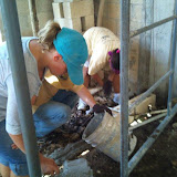Lilly and Debbie, laying blocks!