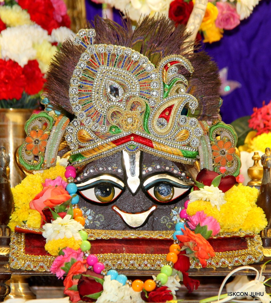 ISKCON Juhu Sringar Deity Darshan 5 Jan 2017 (8)
