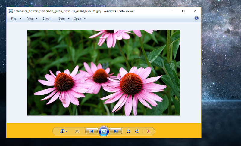 mengaktifkan Windows Photo Viewer 05