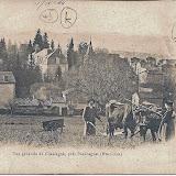 1900-Laboureur-La-Vigne.jpg