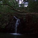 Hawaii Day 5 - 100_7317.JPG
