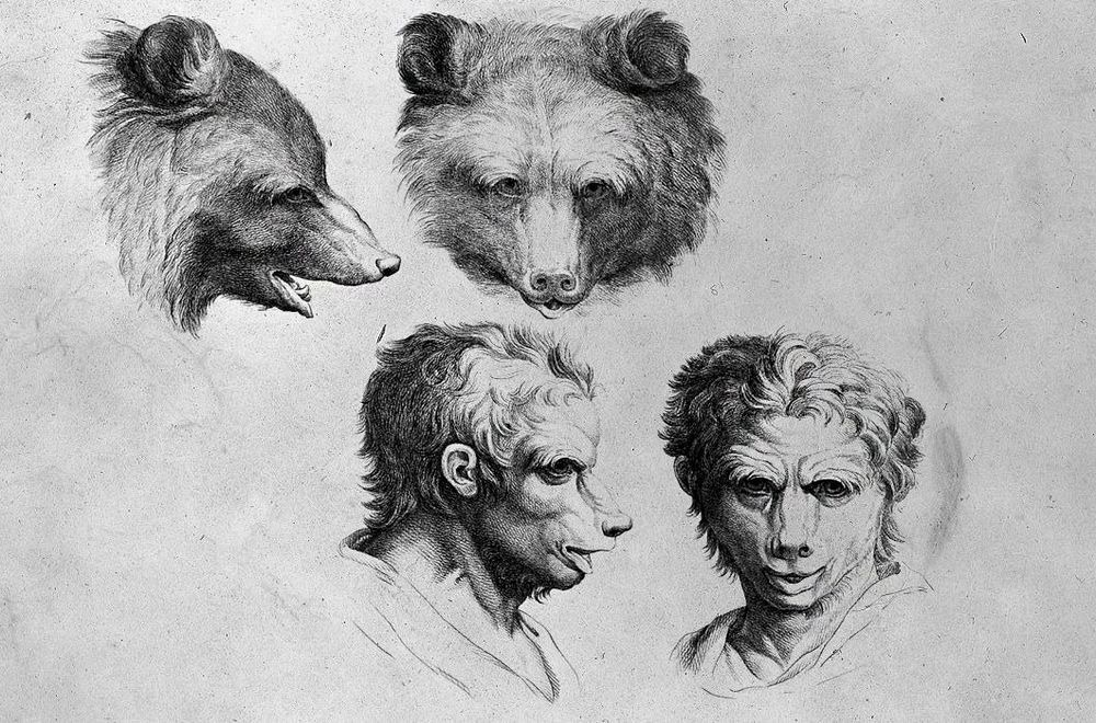 charles-le-brun-physiognomic-heads-2