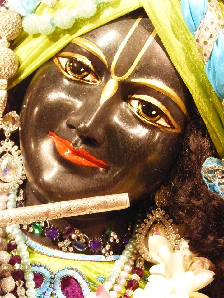 ISKCON New Govardhan Deity Darshan 01 Mar 2016 (16)