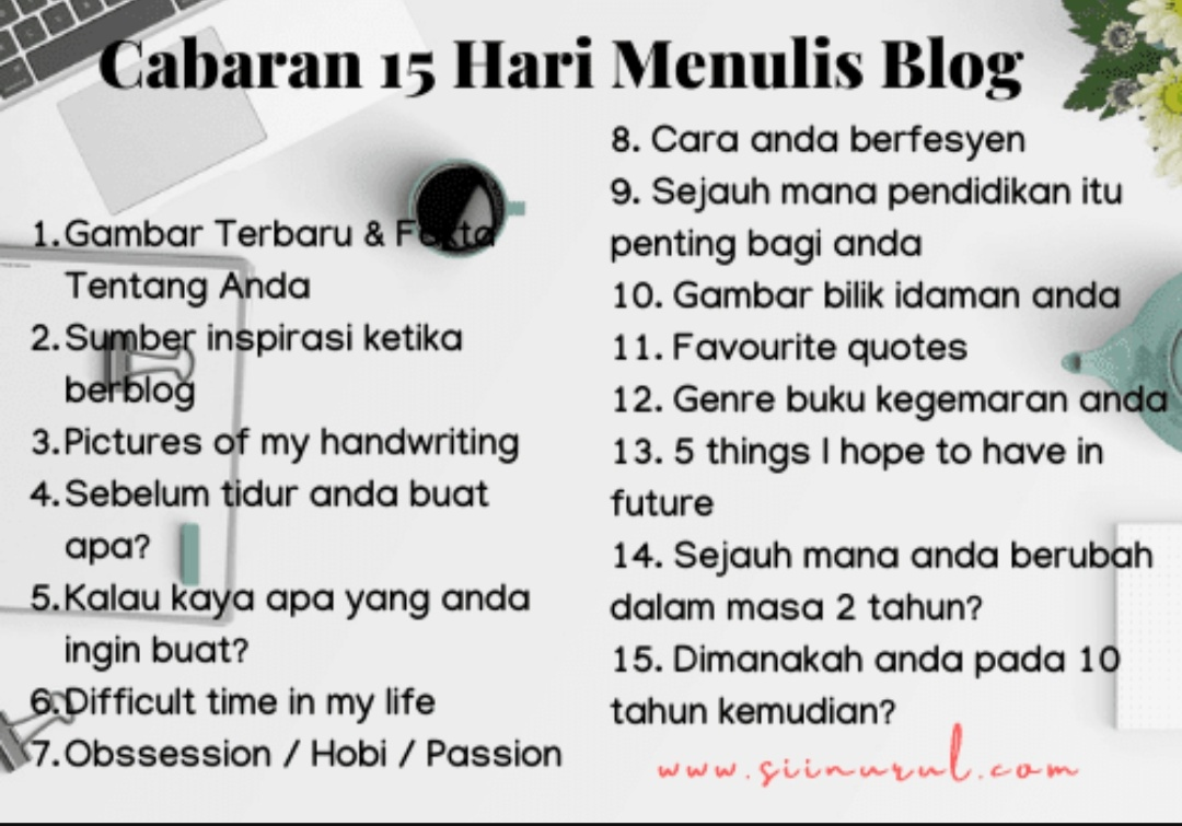 blogging, fieza sani