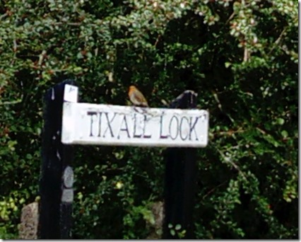 6 robin on toxall loxk sign