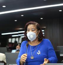Diputada Rudy Méndez (Ñiñin) se identifica con las madres luchadoras, las felicita en su Día.