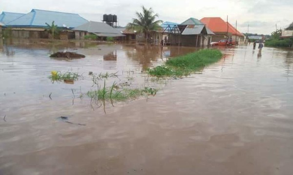 BREAKING: Again, Another disastrous time looms in Nigeria As Flood destroys 300 houses, farmlands in Yobe