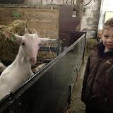 Bevers & Welpen - Boerderij bezoek - 2014-03-22%2B10.17.12-1.jpg