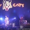 20080903 Stray Cats 003.jpg