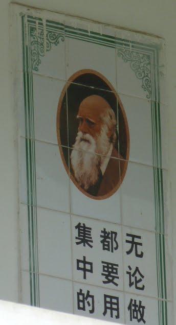 CHINE.SICHUAN.PENG ZHOU et BAI LU  VILLAGE FRANCAIS - 1sichuan%2B2533.JPG