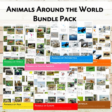Animals Arounds the World Bundle