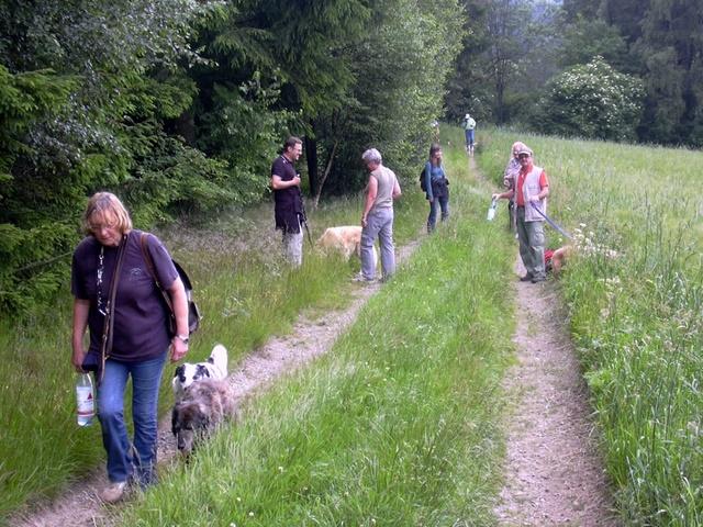 20110629 Hundespaziergang38 - HS%2B38%2B%252811%2529.JPG
