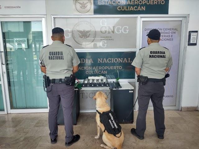BINOMIOS CANINOS DE LA GUARDIA NACIONAL DETECTAN APARENTE METANFETAMINA EN APARATOS PARA EJERCICIO EN BICICLETA