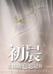 Irreplaceable Love China Drama