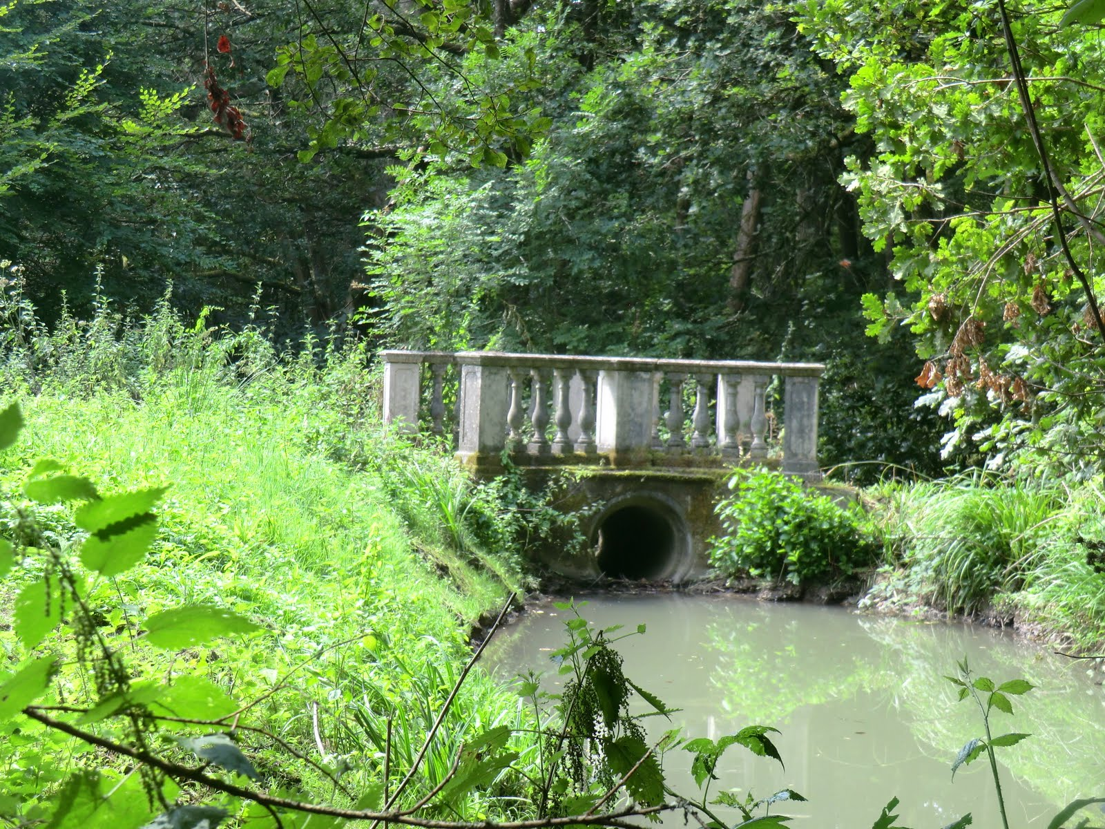 CIMG3457 Ornamental bridge, Cuckfield Park