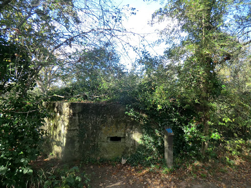 CIMG5433 World War II pillbox, Haysden Country Park