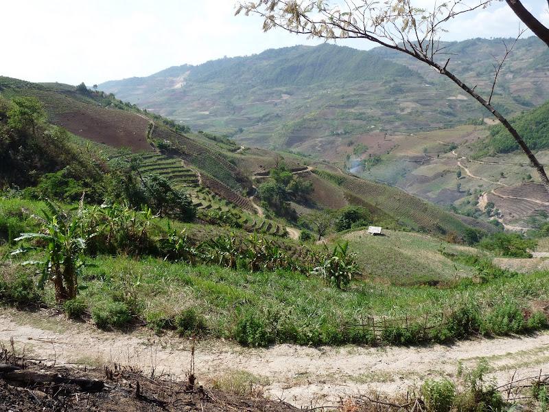 Chine: randonnée xishangbanna, région de Bada - Picture%2B837.jpg