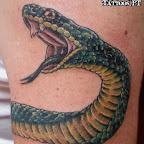 green - Snake Tattoo