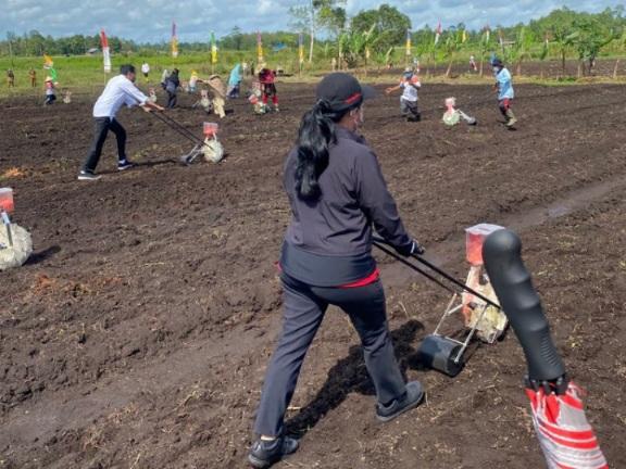 Lupakan Masalah di Jakarta, Puan Coba Bajak Sawah di Papua