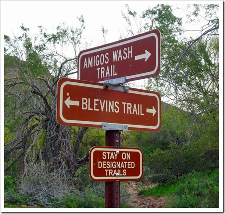 Blevins Trail in Usery