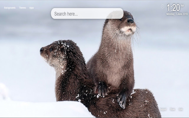 Otter HD Wallpapers New Tab