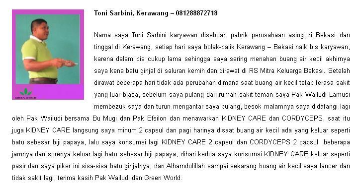 Harga Kidney Care Capsule Asli