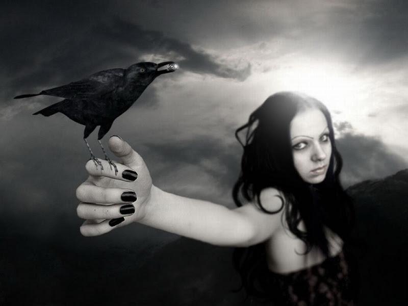 Raven In Arm, Spirit Companion 4