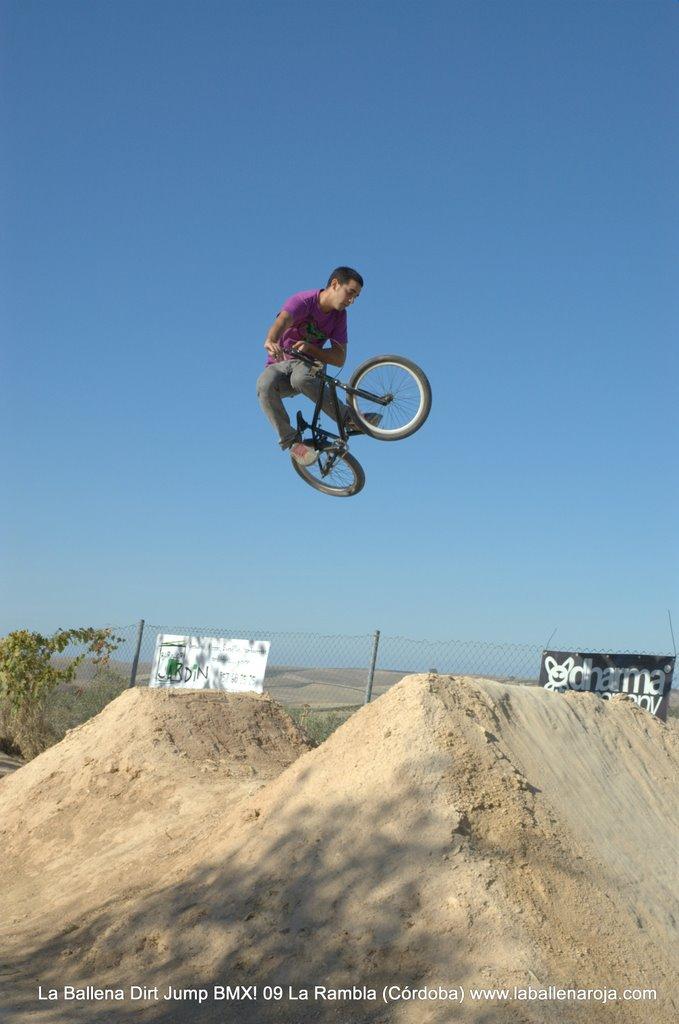 Ballena Dirt Jump BMX 2009 - BMX_09_0041.jpg