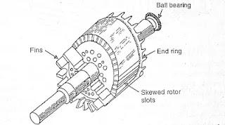 Squirrel cage induction motor, squirrel cage rotor