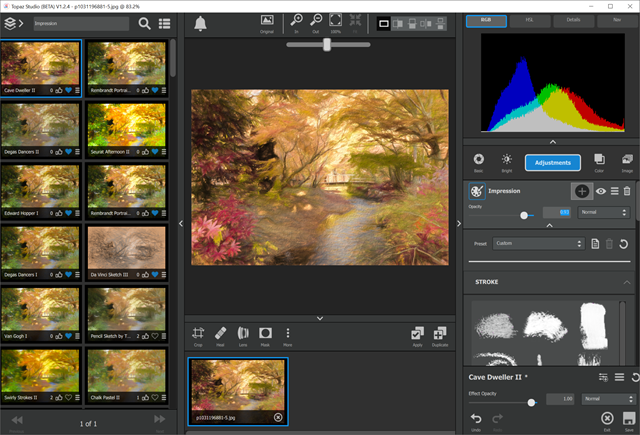 Ron Martinsen's Photography Blog: REVIEW: Topaz Impression