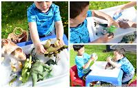 Montessori Inspired Dinosaur Clean-Up Activity