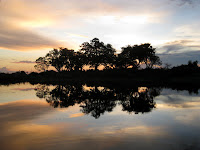 Sunset in the Okavango, Botswana