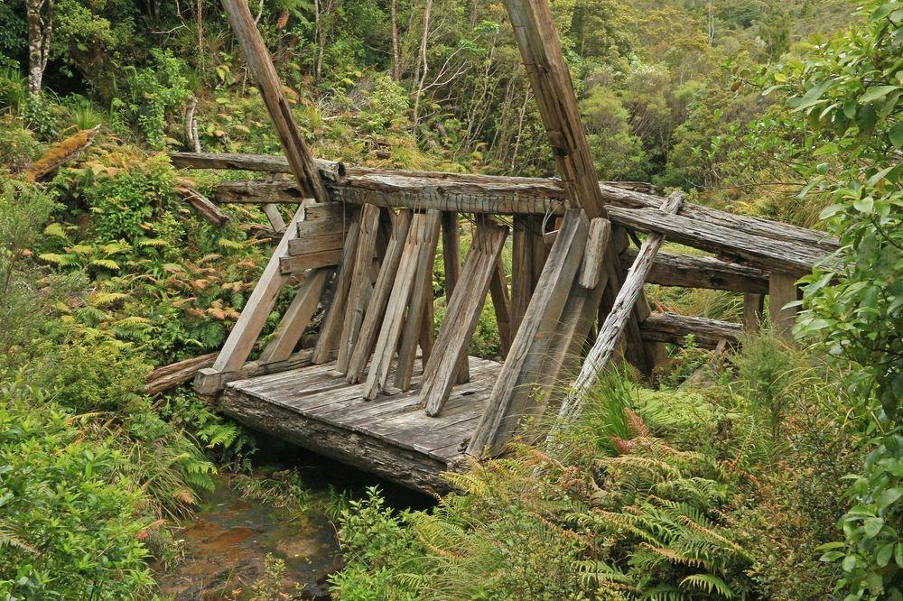 kauri-driving-dam-5
