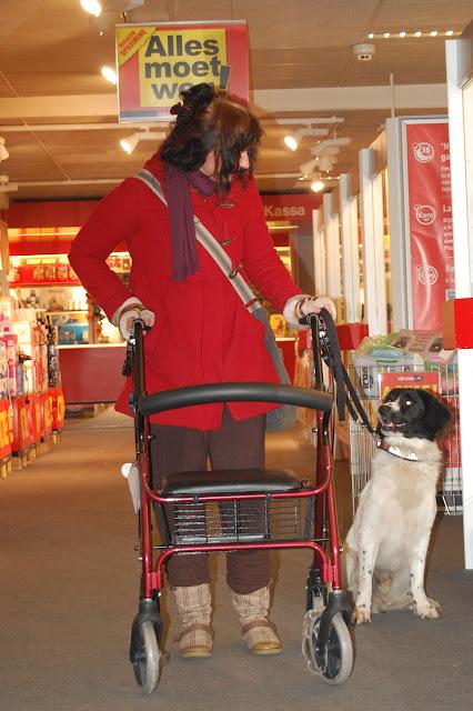 Jonge Hond centrum Emmen - 2012-04-01%2B018.JPG