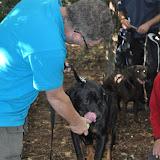 Survival voor Baas en Hond 2012 - DSC_0375.JPG