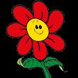 Blumenmarkt D
