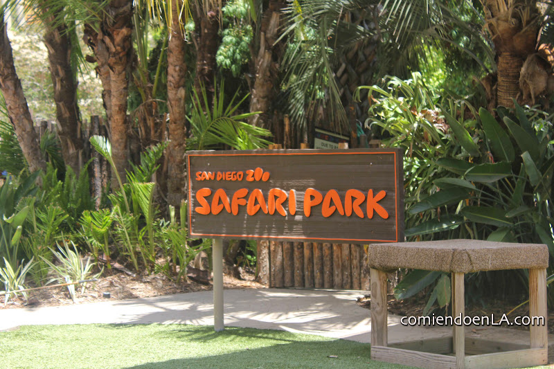 San Diego Zoo Zafari Park