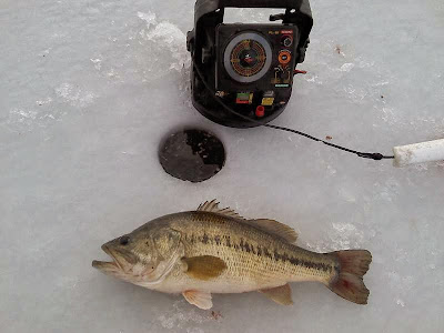 Herman Brothers Blog: Ice fishing reports and pics