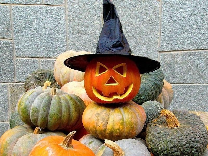 Halloween In Hat, Halloween